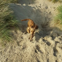 Photo taken at Camber Sands Beach by Peter H. on 10/15/2017
