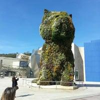 4/27/2013에 Mikel P.님이 Puppy (Guggenheim)에서 찍은 사진