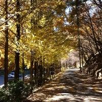 Photo taken at 장태산 자연휴양림 by 종진 허. on 11/10/2013
