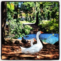 Photo taken at Canyon Oaks Country Club by Heather L. on 9/28/2013