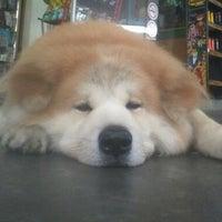 """Photo taken at """"Fugô"""" - Dog Adventurer Brazil by Marcelo G. on 3/1/2013"""