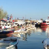 5/6/2013 tarihinde Efstatin M.ziyaretçi tarafından Tekirdağ Sahil'de çekilen fotoğraf