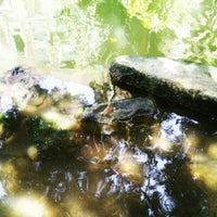 Photo taken at Courtyard San Antonio Riverwalk by Steven P. on 7/7/2012