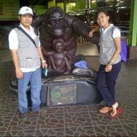 Photo taken at Dinas Peternakan & Perikanan Kabupaten Magelang by lala y. on 3/13/2014