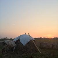 Photo taken at Усадьба Дворяниново by Natalie E. on 8/16/2015