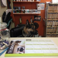 Photo taken at Park Animal Hospital by Porfirio L. on 1/21/2013