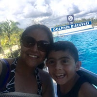 Photo taken at Dolphin Maroma By Dolphin Discovery by Laura J. on 10/27/2015