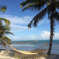 Photo taken at Rojo Beach Bar by Andrea B. on 12/29/2014