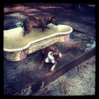 Photo taken at Daffin Park Dog Park by Krista L. on 10/2/2012