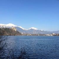 Photo taken at Blejsko Jezero / Lake Bled by Todd O. on 3/8/2014