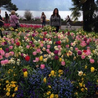 Photo taken at Montreux by Pınar T. on 4/25/2015