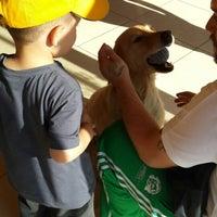 7/20/2014 tarihinde Derya A.ziyaretçi tarafından Petland Veteriner Klinigi'de çekilen fotoğraf