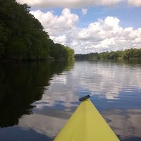 Photo taken at Wakulla River by Kevin W. on 8/20/2016