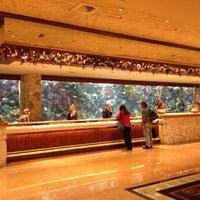 12/1/2012에 Rodrigo G.님이 The Mirage Aquarium에서 찍은 사진