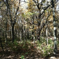 Photo taken at Plum Creek Nature Center/Goodenow Grove Nature Preserve by Baldguy72 on 10/12/2012