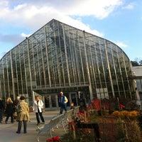 Photo taken at Krohn Conservatory by Deborah B. on 11/23/2012
