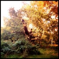 Снимок сделан в Sherwood Forest National Nature Reserve пользователем Trish M. 10/9/2012