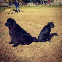 Photo taken at Rowayton Dog Park by Brian G. on 11/2/2013