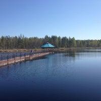Photo taken at Национальный парк «Орловское полесье» by Юлия Н. on 5/7/2013