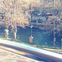 12/8/2012 tarihinde Afra B.ziyaretçi tarafından Serdivan'de çekilen fotoğraf