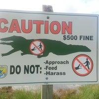"Photo taken at J.N. ""Ding"" Darling National Wildlife Refuge by Eric T. on 11/6/2012"