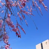 Photo taken at 富山県立大学 by 真弓 伊. on 4/5/2013