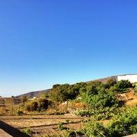Photo taken at Güímar by José María R. on 6/20/2014