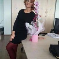 Photo taken at Bolu Gazipaşa Ortaokulu by Kübra K. on 11/24/2015