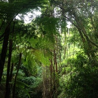 Photo taken at Fred Hollows Reserve by Sven M. on 12/3/2013