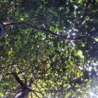 12/2/2012 tarihinde Erdal B.ziyaretçi tarafından White Mill'de çekilen fotoğraf
