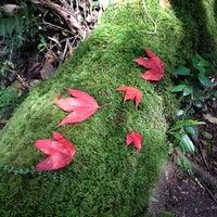 12/21/2013 tarihinde Prapat C.ziyaretçi tarafından อุทยานแห่งชาติภูกระดึง'de çekilen fotoğraf