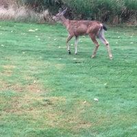 Photo taken at Pumpkin Ridge Golf Club by Russ on 8/28/2015