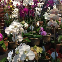 Photo taken at The Fresh Market by Christina J. on 10/28/2012