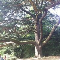 Das Foto wurde bei Parkland Walk (Finsbury Park to Crouch End Section) von Kinga L. am 8/28/2013 aufgenommen