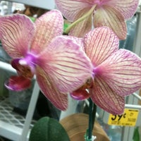 Photo taken at Lowe's Home Improvement by Ana M. on 11/7/2012
