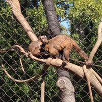 Photo taken at Monkey Trail by Ryan F. on 2/24/2013