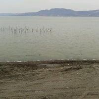 Photo taken at Ajijic by Lupita G. on 5/11/2013