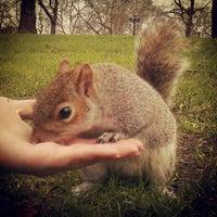รูปภาพถ่ายที่ Green Park โดย Tanya Y. เมื่อ 12/29/2012