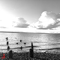 Photo prise au Golden Gardens Park par Rachel S (. le2/8/2013