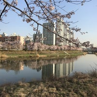 Photo taken at 안산호수공원 by Ikhan H. on 4/11/2017