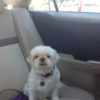 Photo taken at Ahwatukee Commons Vet by Jen K. on 6/13/2014