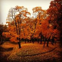 Снимок сделан в Таврический сад пользователем 🅰lexei 🇷🇺 . 10/11/2013