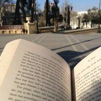 Снимок сделан в Sabir Bağı пользователем Laman 🌞 3/11/2013