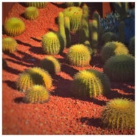 Photo taken at Succulent Garden by S H A Y on 8/10/2015