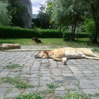 Photo taken at Matematik Bölümü by Sena A. on 5/16/2013