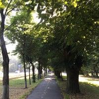 Photo taken at Лiсопарк by Nata R. on 7/20/2017