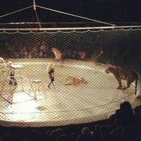 Снимок сделан в Національний цирк України / National circus of Ukraine пользователем Igor' B. 1/4/2013