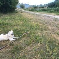 Photo taken at Озерцо by Mariya P. on 6/16/2017