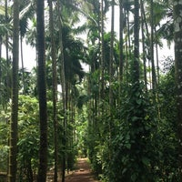 Photo taken at Sahakari Spice Farm by Amr A. on 8/25/2013
