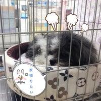 Photo taken at Thonglor Pet Hospital by Titang P. on 9/19/2016